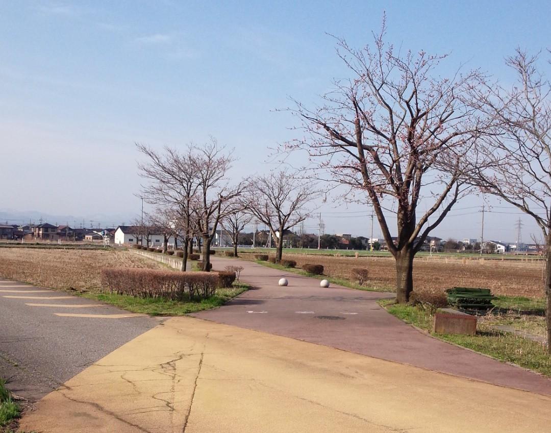 ヘルスロード石子神社