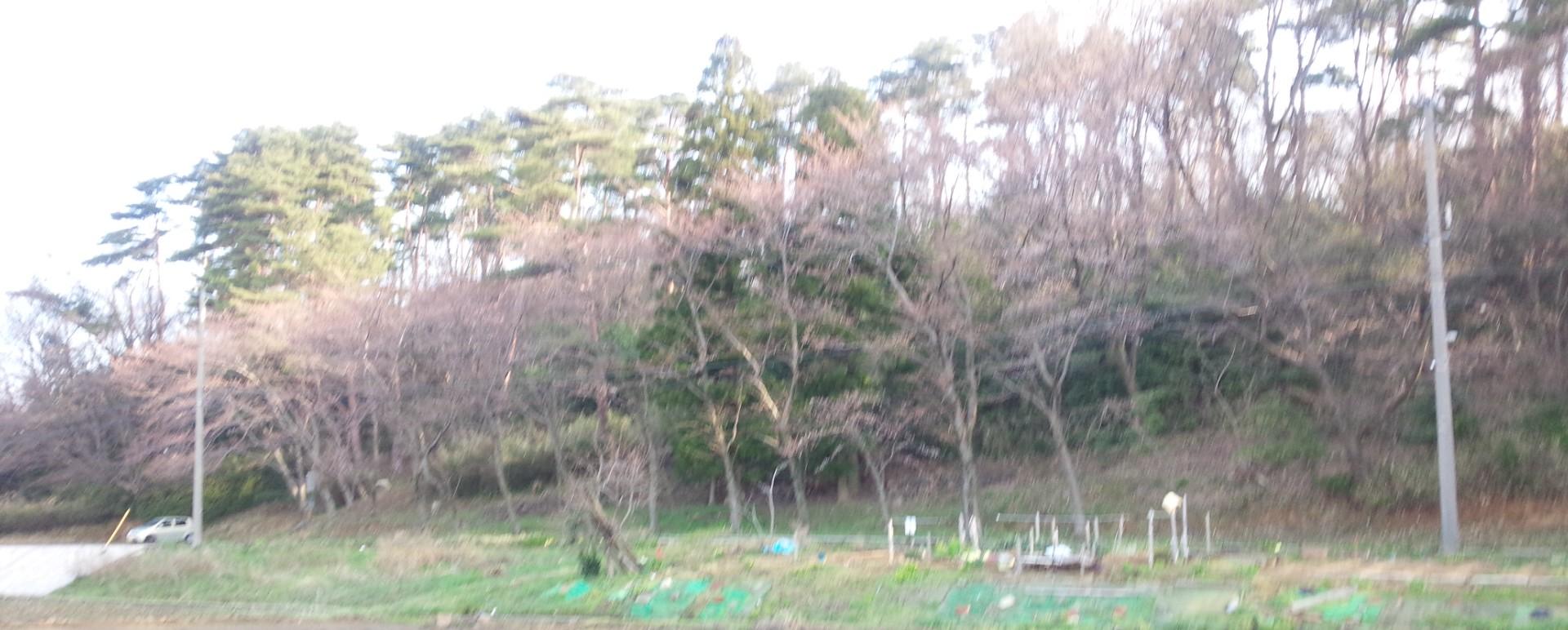 和田山西側